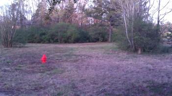 IMAG0038 hydrant