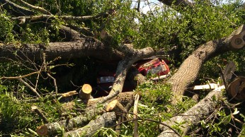 IMAG2587 april 28 Tanya Mikulas Tuscaloosa tornado 2011