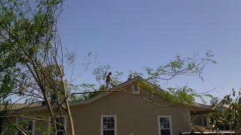 IMAG2772 april 29 Tanya Mikulas Tuscaloosa tornado 2011
