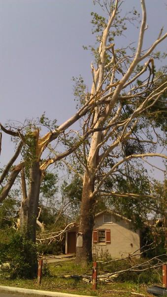 IMAG2827 april 30 Tanya Mikulas Tuscaloosa tornado 2011