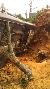IMAG2848 passat may 1 Tanya Mikulas Tuscaloosa tornado 2011