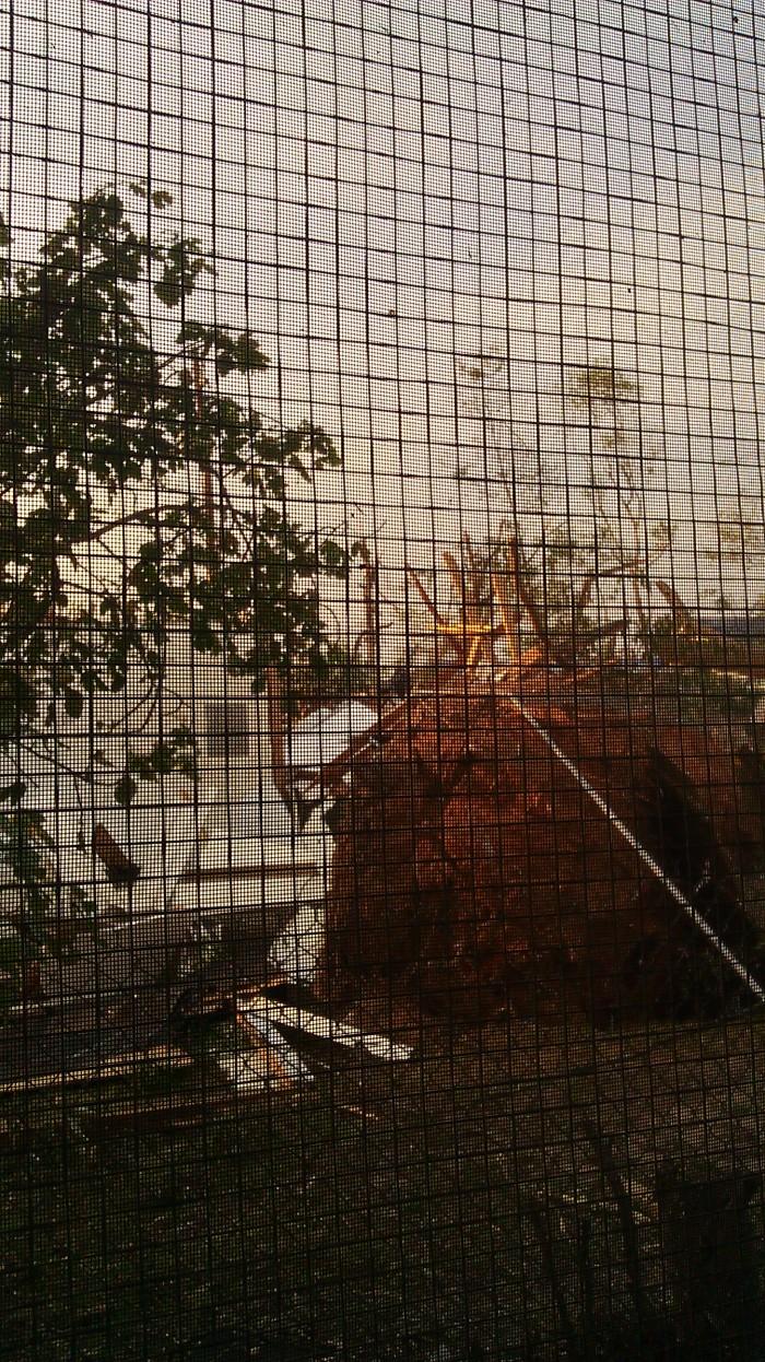 IMAG2856 back porch may 1 Tanya Mikulas Tuscaloosa tornado 2011