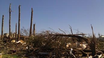 IMAG3072 tree may 4 Tanya Mikulas Tuscaloosa tornado 2011