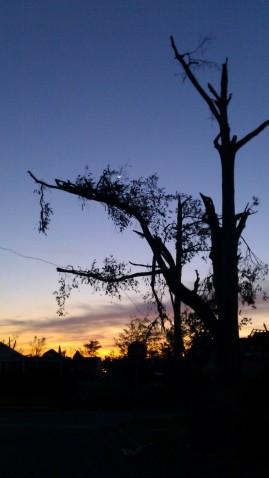 IMAG3112 may 5 Tanya Mikulas Tuscaloosa tornado 2011