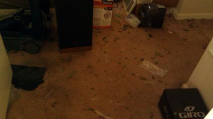 IMAG3237 glass may 9 Tanya Mikulas Tuscaloosa tornado 2011