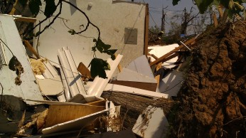 IMAG3276 tree may 10 Tanya Mikulas Tuscaloosa tornado 2011