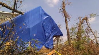 IMAG3333 tarps may 12 Tanya Mikulas Tuscaloosa tornado 2011