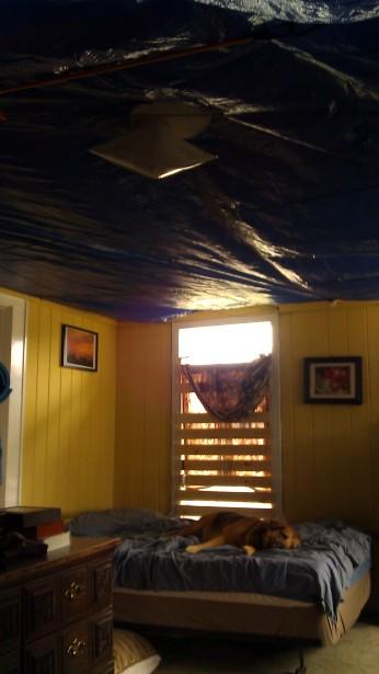IMAG3410 ceiling may 13 Tanya Mikulas Tuscaloosa tornado 2011