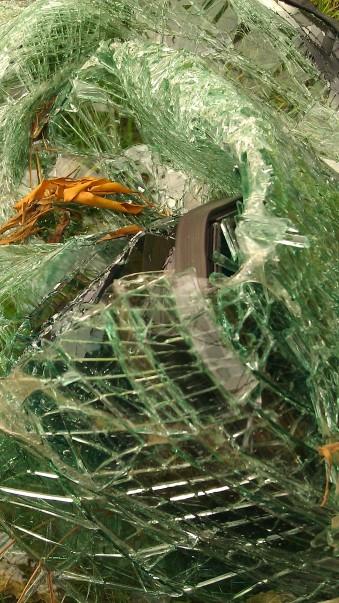 IMAG3555 windshield