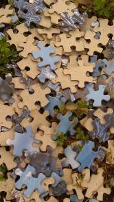 IMAG3576 puzzle