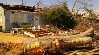 IMAG3623 live cats may 18 Tanya Mikulas Tuscaloosa tornado 2011