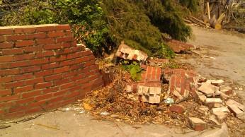 IMAG3631 may 18 Tanya Mikulas Tuscaloosa tornado 2011