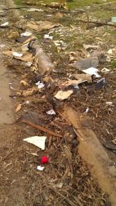 IMAG3690 may 21 Tanya Mikulas Tuscaloosa tornado 2011