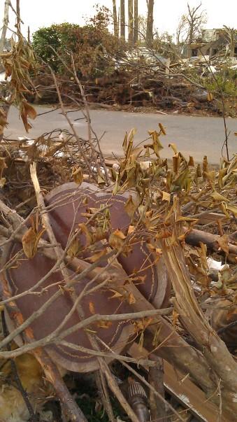 IMAG3697 may 21 Tanya Mikulas Tuscaloosa tornado 2011