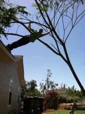 IMG_0456 april 29 Mandie Offerman Tuscaloosa tornado 2011