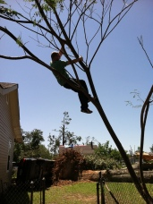 IMG_0458 april 29 Mandie Offerman Tuscaloosa tornado 2011