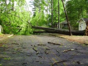 Tanya Mikulas, Forest Lake Drive, Tuscaloosa Alabama, 4/13/2009 before image #1
