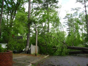 Tanya Mikulas, Forest Lake Drive, Tuscaloosa Alabama, 4/13/2009 before image #2
