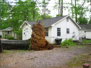 Tanya Mikulas, Forest Lake Drive, Tuscaloosa Alabama, 4/13/2009 before image #3