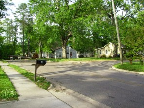 Tanya Mikulas, Forest Lake Drive, Tuscaloosa Alabama, 4/13/2009 before image #4