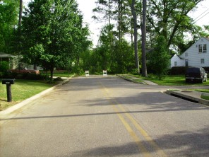 Tanya Mikulas, Forest Lake Drive, Tuscaloosa Alabama, 4/2009 before image #5
